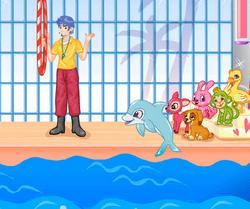 Выступает дельфин 5