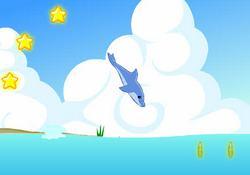 Дельфин акробат