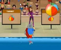 Шоу дельфинов 1